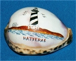 Hatteras Lighthouse Etched Tiger Cowry