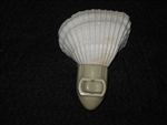 White Ark Shell  Night Light