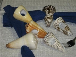 Assorted Cone Napkin Rings