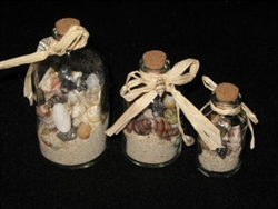 Shells in A Bottle