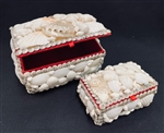 Shell Boxes Set of 2 White