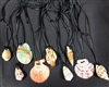 Assorted Shells On Cord Necklace