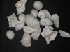 White Shell Mix-by kilo