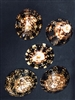 Limpets XX 3-3.5""
