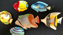 Tropical Wood Fish  3 inch Magnet