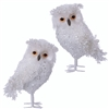 Raz Imports Enchanted Holiday Whimsy Iced Owl Ornament (Set of 2)