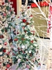 Season's Design 5' Snowy Peppermint Co. Lighted Christmas Tree SD-92049050000