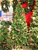 Season's Design 6FT Versailles Decorated Christmas Tree on Wheel SD-92184060000