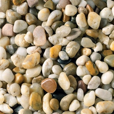 Tag Multicolored Mini Sized River Stone  (1 pack of 12 Jars)