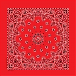 Red, Black & White Paisley Bandanna