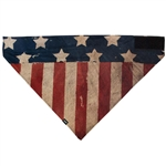 Patriot Bandanna Mask