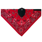 Motorcycle Face Mask: Red Paisley Neodanna