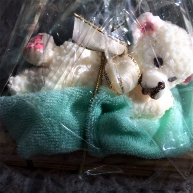 Teddy Bear Soap Gift Package