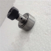 22mm Cam Follower Needle Roller Bearing with eccentric Collar