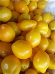 Certified Organic Tomato Plants Plum Lemon