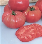 Certified Organic Tomato Plants Pruden's Purple