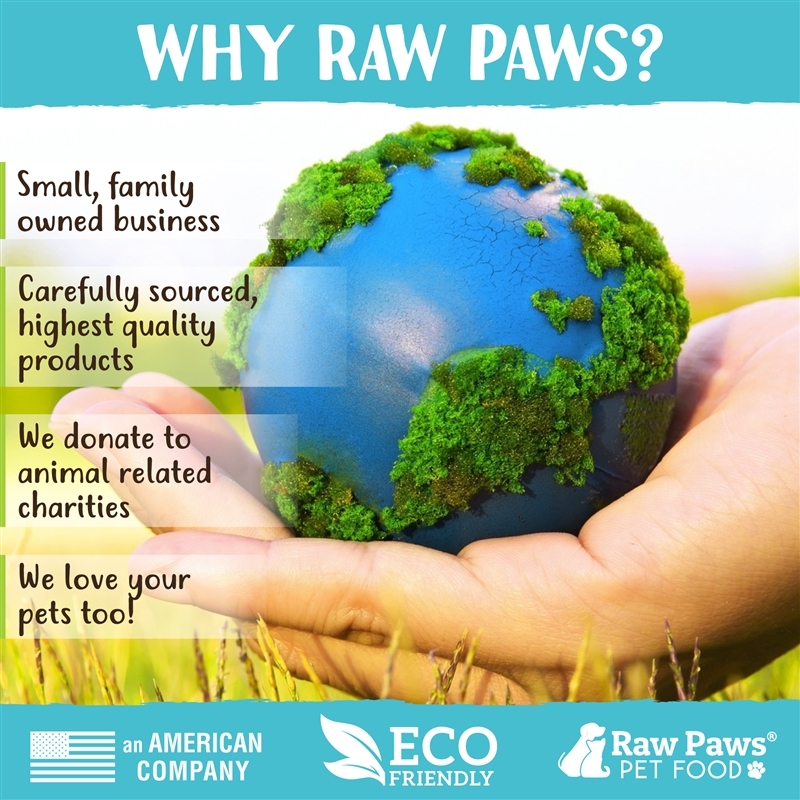 Raw Paws Birthday Gift Box For Medium Dogs