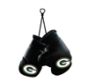 Green Bay Packers Mini Boxing Gloves Window Danglers