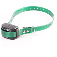 no shock training collar