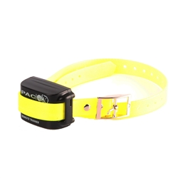 dog training collar EXC7