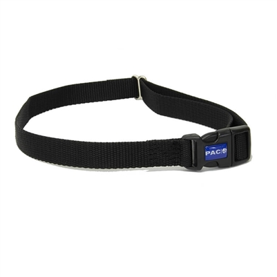 webbing strap dog collar