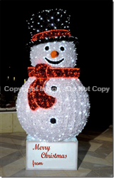 Snowman with lights and carpet garland