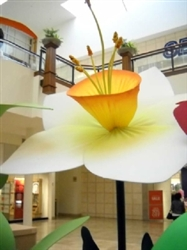 11' to 18' Giant daffodil flower