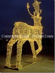 Giant Reindeer with stands and aluminum frame