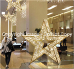LED Lighted Star Ornament