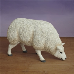 Standing nativity sheep