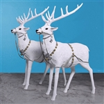 two white snow reindeer