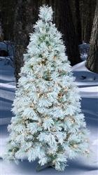 Indoor Flocked long Needle White Pine Tree with clear mini lights