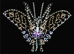 LED Tiger Lily Butterfly
