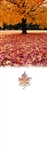 Personalized Fall Banner with Carpet of leaves