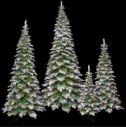 Spruce Tree with LED lights