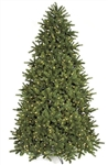 LED lit Douglas Fir tree