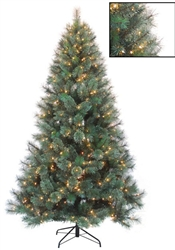 Indoor Glasgow Fir Timberline Tree with clear mini lights