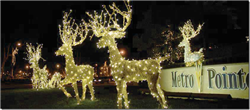 Natural Grapevine deer with lights