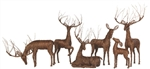 Grapevine Doe, Buck, Fawn, grazing, laying and prancing