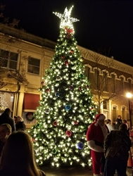 20' Christmas Tree lighting in Tennessee