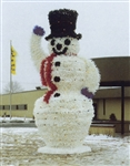Full Round Sparkling Snowman with LED bulbs
