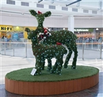 Giant Topiary Deer Pair with LED Lights