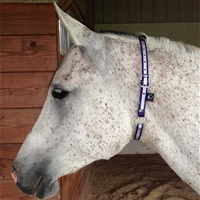 Biothane Reflective Neck Collar for Sale!