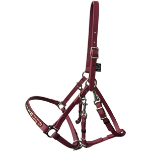 Navajo Designed Beta BioThane Halter Bridle - No Brow for Sale!