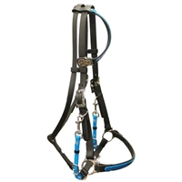 One Ear Halter Bridle For Sale!