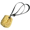 Sea Sponge with Beta Biothane® Sponge Leash for Sale