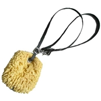 Sea Sponge with Beta Biothane Sponge Leash for Sale