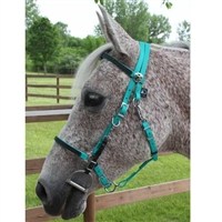 Traditional Trail Halter Bridles for sale