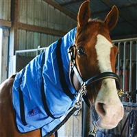 Equi Cool Down Equine Neck Wraps for Sale!