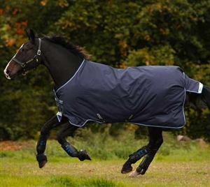 Horseware Ireland Amigo Bravo 12 Original - (250g Medium) For Sale!